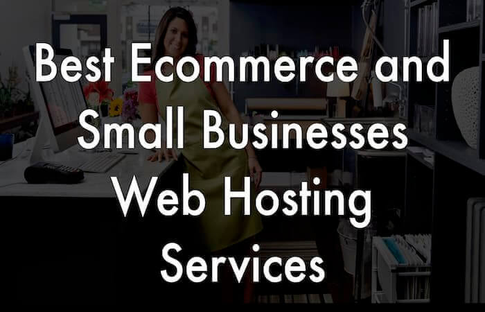 small businesses and ecommerce web hosting