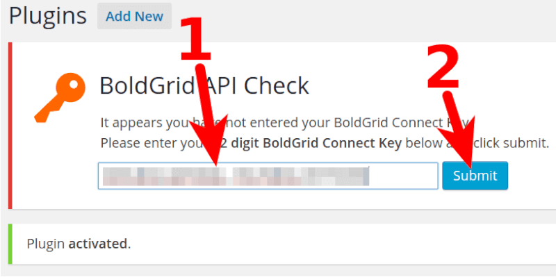 activating Boldgrid with API key